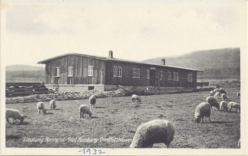 Ansichtskarte Bad Homburg - Dornholzhausen, Siedlung Neuland