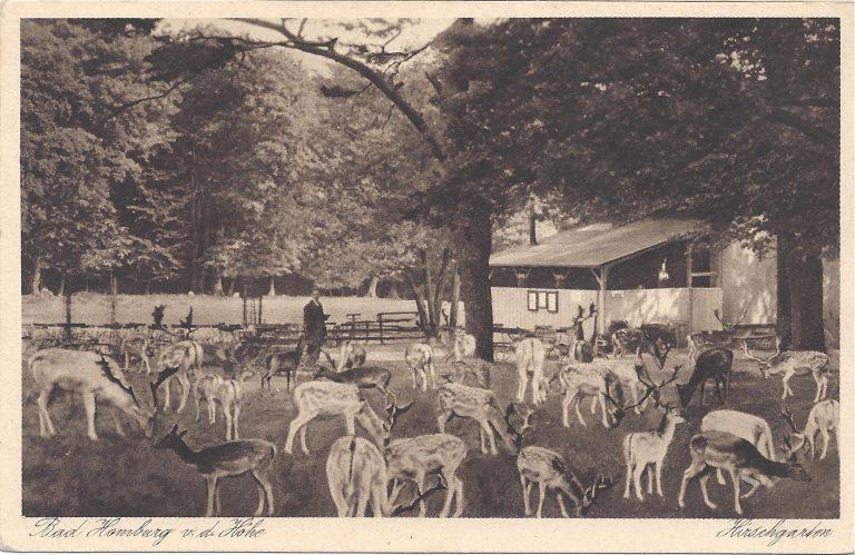 Hirschgarten Taunus